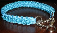 Image Result For Martingale Dog Collars