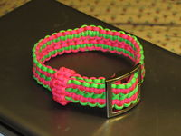 Paracord Dog Collars How To Make